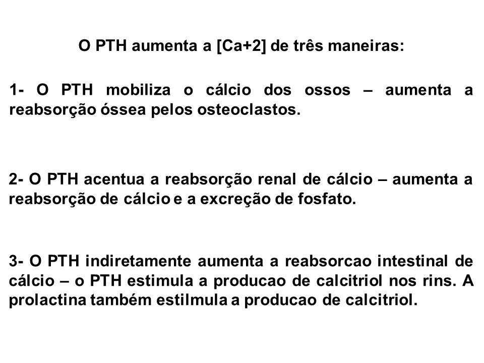 O PTH aumenta a [Ca+2] de três maneiras: